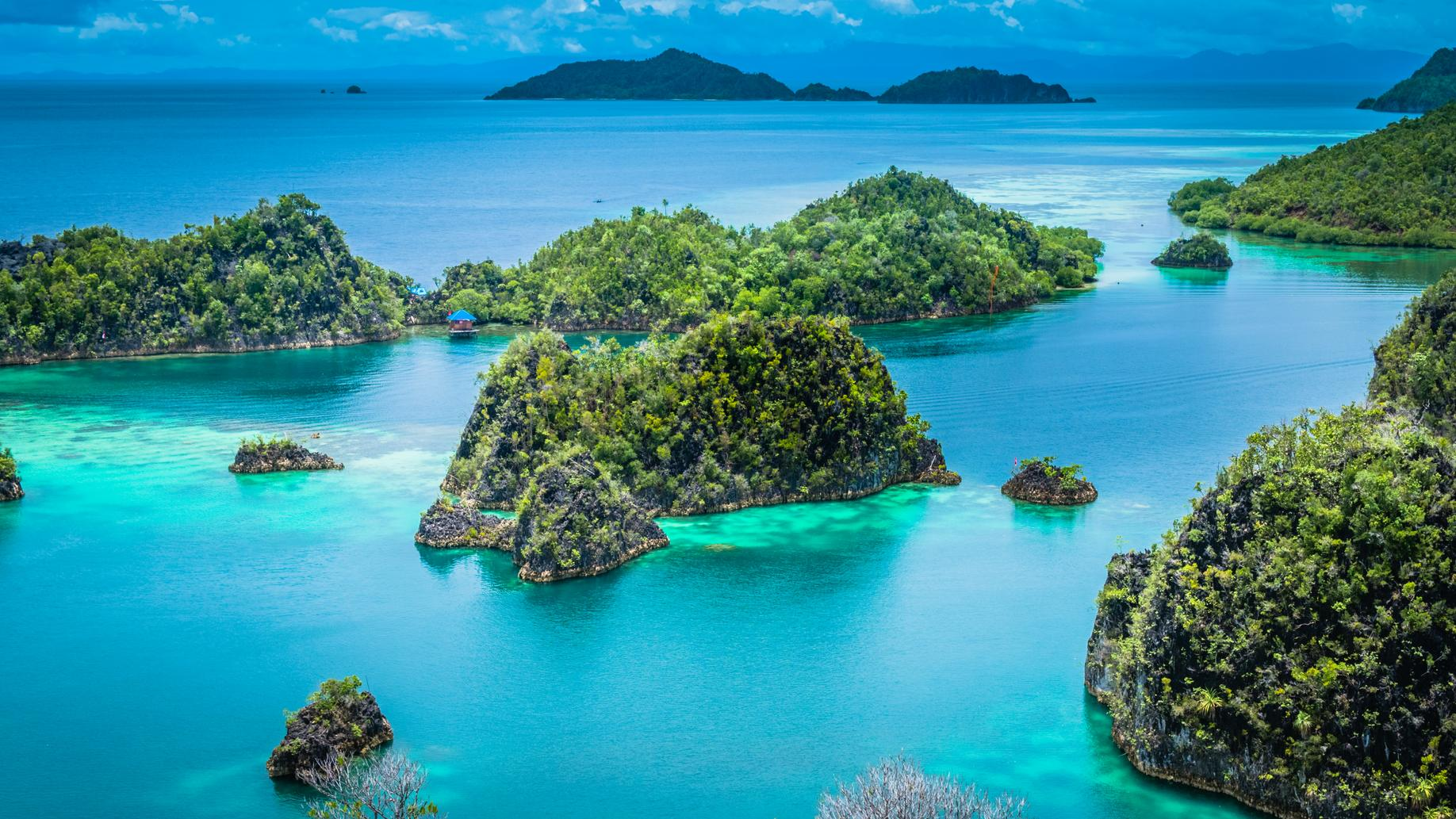 Raja Ampat, or Four Kings, is an island archipelago in New Guinea, Indonesia.