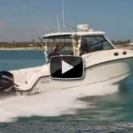 Video: 2012 Boston Whaler 315 Conquest Boat Review