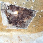Rotten to the Core: Fiberglass Core Repair, Part Two