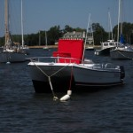 Catamaran Powerboats: Offshore Fishing in a Small Package