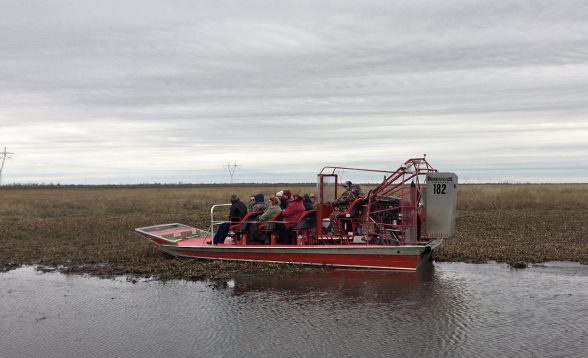 Airboat in Louisiana Bayou Swamp. Photo: C. Ryan McVinney