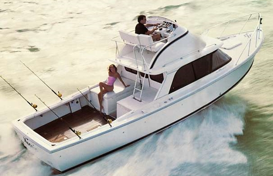"Classic Bertram 31s are sought-after boats. Newer Bertrams, too, have their followings. Some of them may even be ""rare."" But it takes research to know.  Even then, is rare a good thing in this case?"