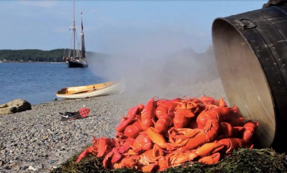 Maine Lobster Bake - A 4th of July Tradition.