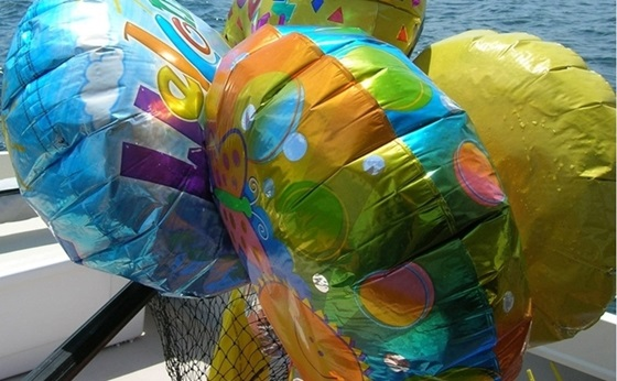 Mylar balloons travel far and wide over the world's waters. They don't give up easily, but you can gaff 'em and boat 'em if you're quick.