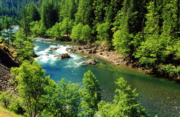 Clackamas RIver, Estacada, Oregon.