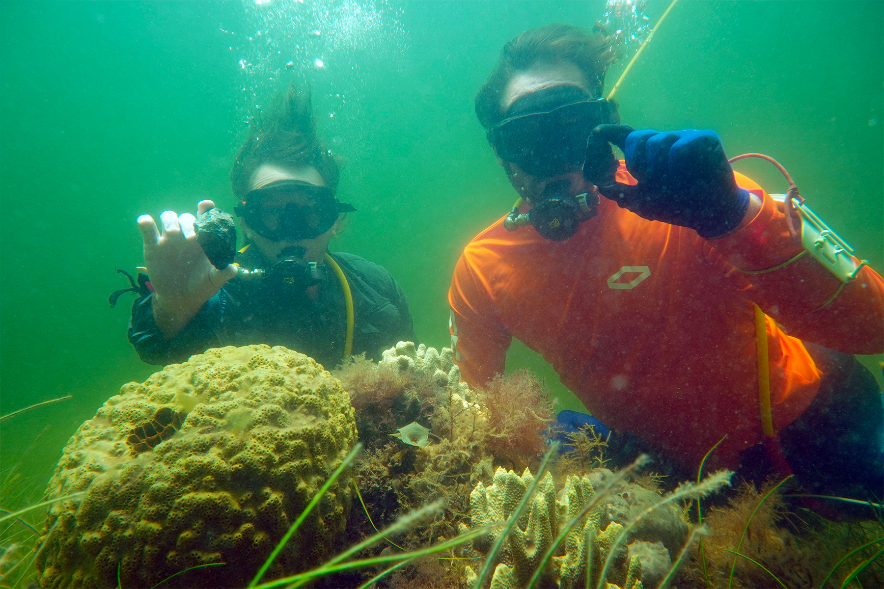 Underwater Archaeologist Shawn Joy Recovering Artifacts From The Sea Bed in The Gulf Of Mexico.